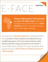 E-FACE Report