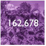 162,678